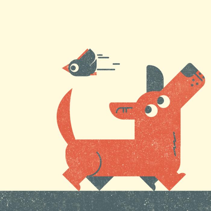 12.Dog-the-jungle-illustration-wood-campers