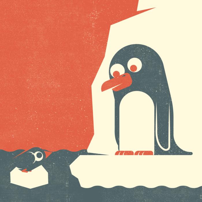 16.Pingu-the-jungle-illustration-wood-campers