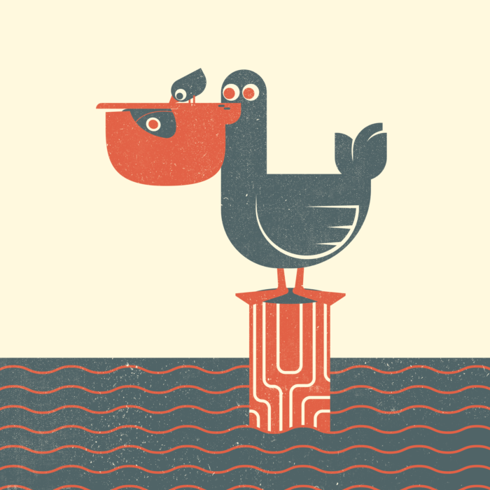 17.Pelican-the-jungle-illustration-wood-campers