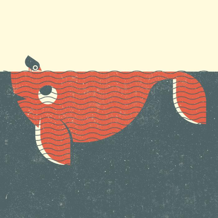 2.Whale-oiseau-the-jungle-illustration-wood-campers