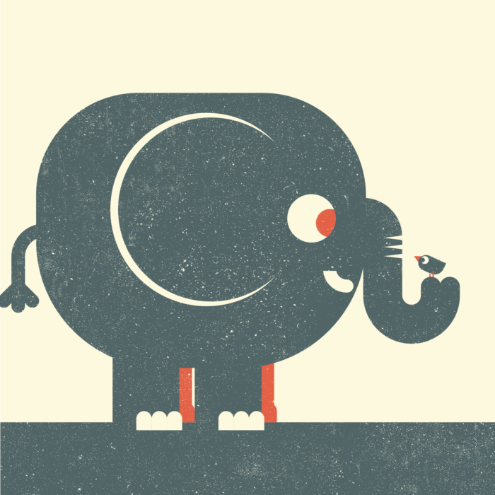 3.Elephant-oiseau-the-jungle-illustration-wood-campers
