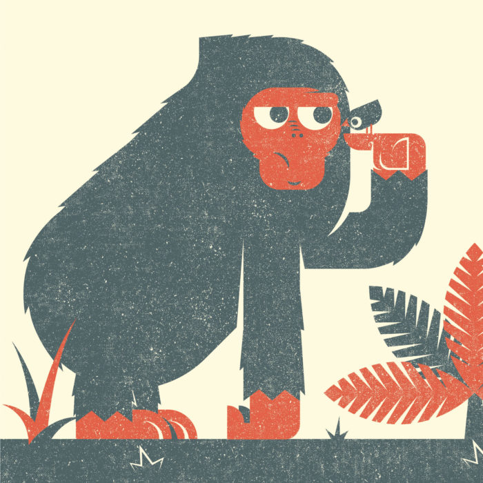 7.Ape-the-jungle-illustration-wood-campers